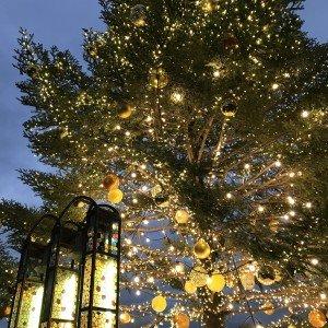 幸せの鐘とツリー