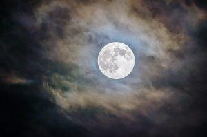 明日も月が綺麗ですね