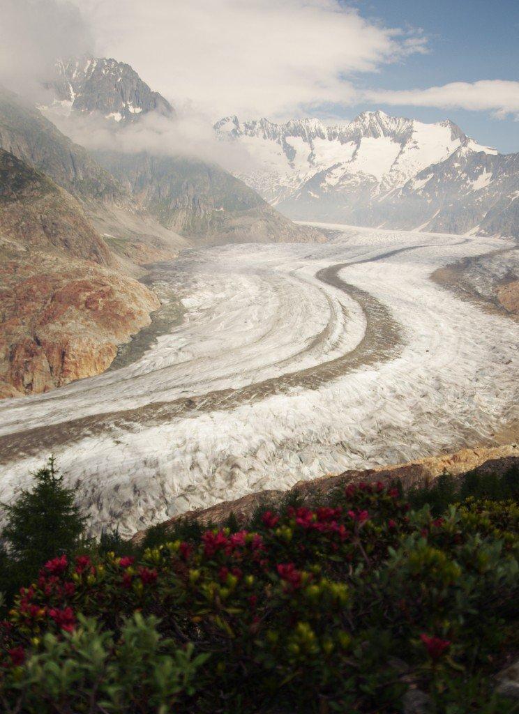 アレッチ氷河6