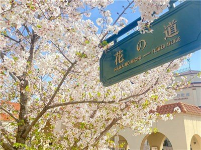 guesthouse sharehouse GRAN寶塚(大阪) building40