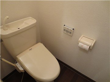 Toilet with Japanese style washlet