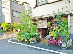 guesthouse sharehouse シェアスタイル浅草 5F6F building20