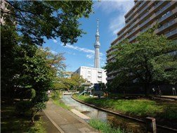 guesthouse sharehouse 東京Share淺草本所 building19