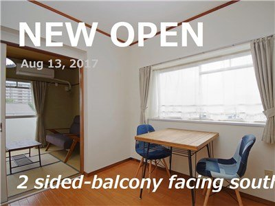 guesthouse sharehouse NOZAKI BUILDING 85(Kodaira) room203