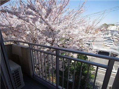 guesthouse sharehouse GARDEN TOWN 戶塚 building20